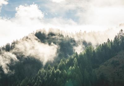 美丽的早晨山林雾风光4k壁纸