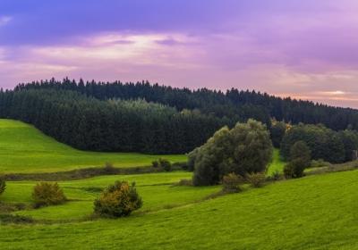阿尔卑斯山风景 草地 山地 森林 3440x1440壁纸